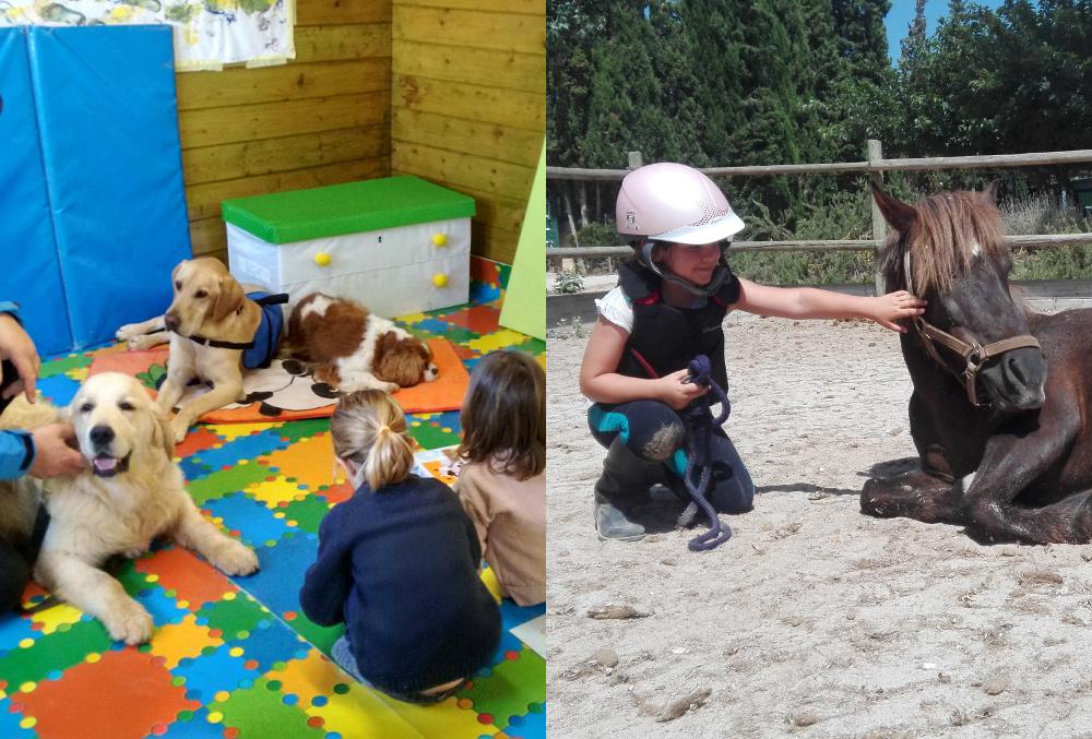 Baby Dog & Baby Pony en S'Hort Vell
